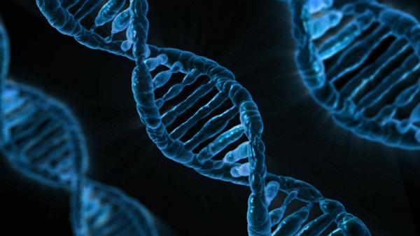Extracción de ADN a partir de saliva
