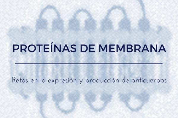Proteínas de membrana: Retos en la expresión y producción de anticuerpos