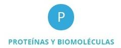 Proteinas y biomoleculas Abyntek