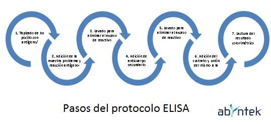 solucionar-problemas-en-un-inmunoensayo-elisa-pasos