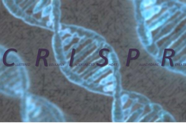 Introducción a la tecnología CRISPR/Cas9
