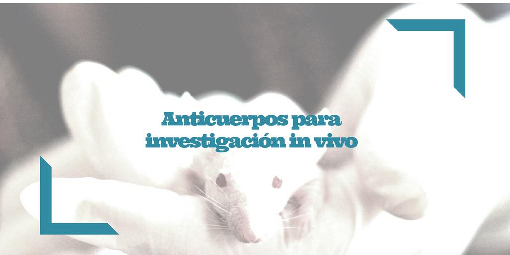 Anticuerpos para investigación in vivo