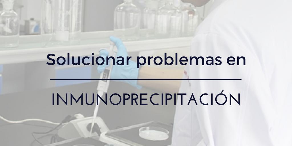 Solución de problemas en Inmunoprecipitación (IP)