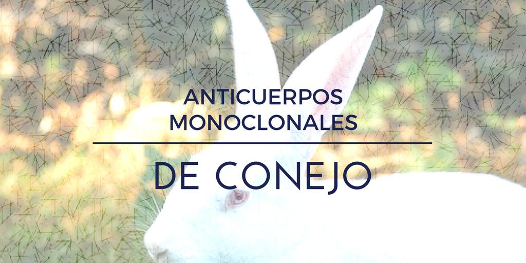 Ventajas de los anticuerpos monoclonales de conejo