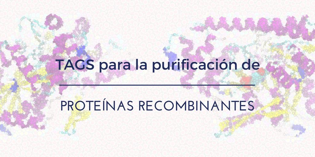 Tags para la purificación de Proteínas Recombinantes