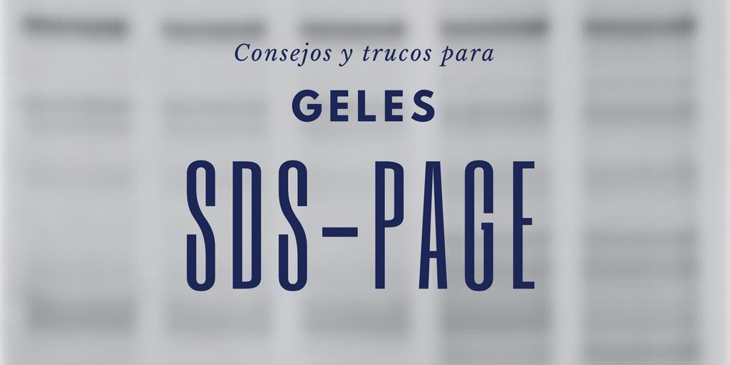 Cómo hacer un SDS-PAGE: Trucos y Consejos