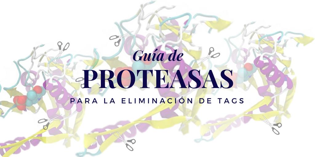 Guía de proteasas para la eliminación de tags