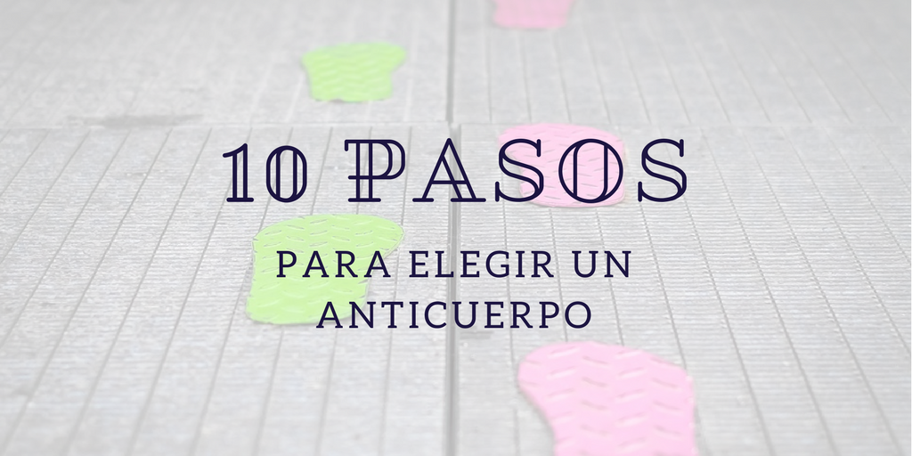 10 pasos para elegir un Anticuerpo