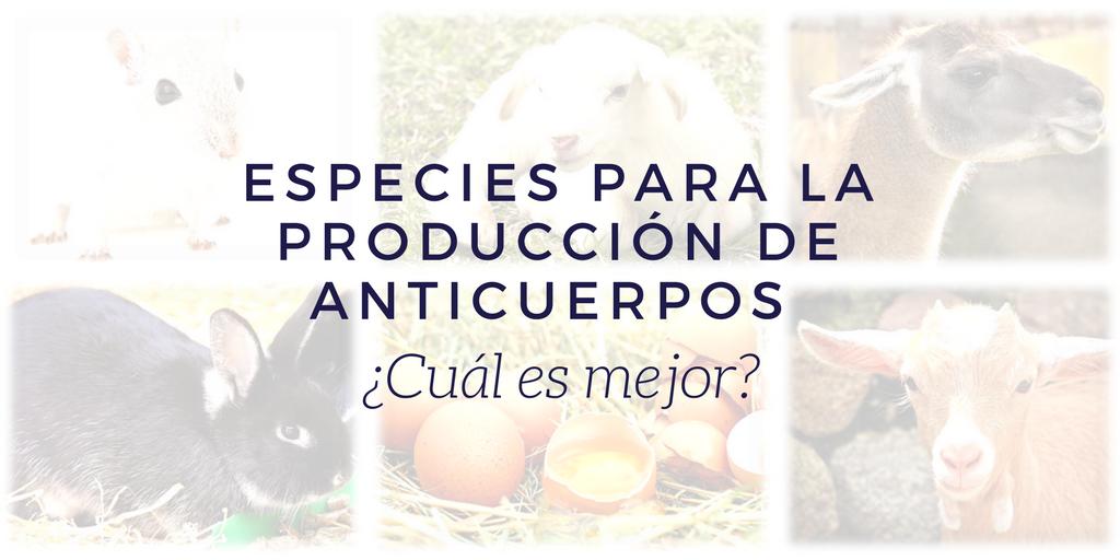 Especies para la producción de anticuerpos