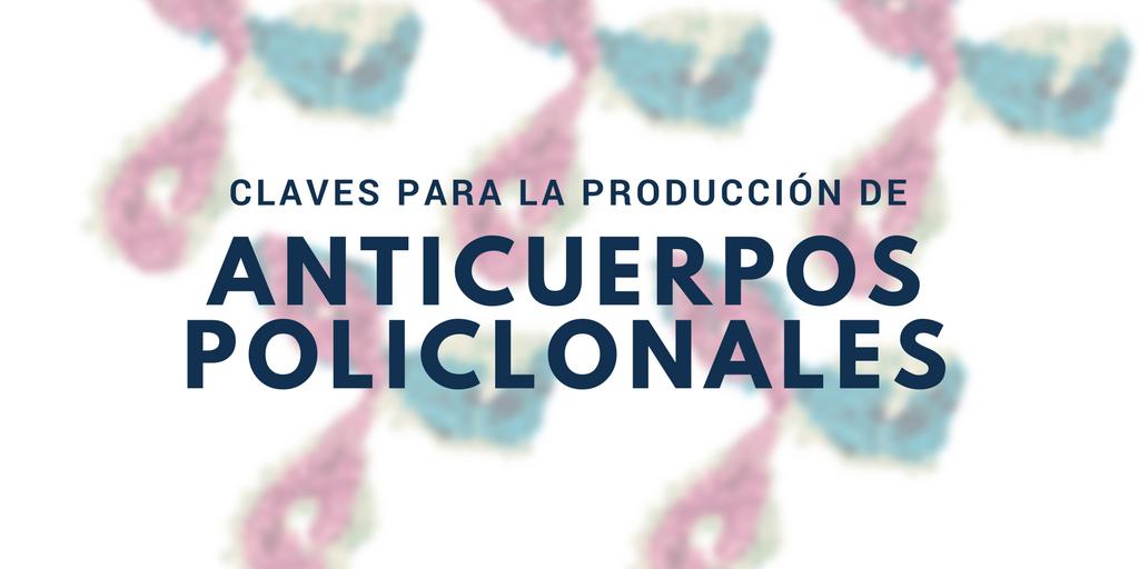 Claves para la producción de anticuerpos policlonales