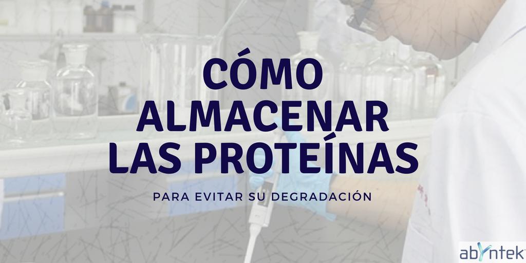 Cómo almacenar las proteínas para evitar su degradación