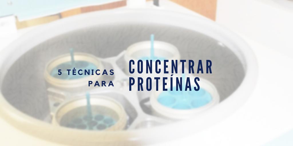 5 Técnicas para concentrar proteínas