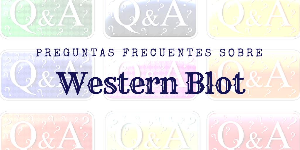 Preguntas frecuentes sobre western blot