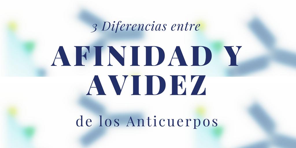 3 Diferencias entre afinidad y avidez de los anticuerpos