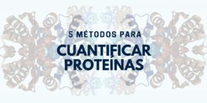 Métodos para cuantificar proteínas