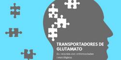Transportadores de Glutamato en investigación en Neurociencias
