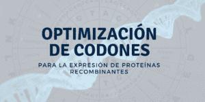 Optimización de codones