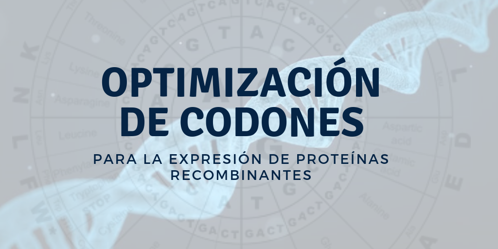 Optimización de codones