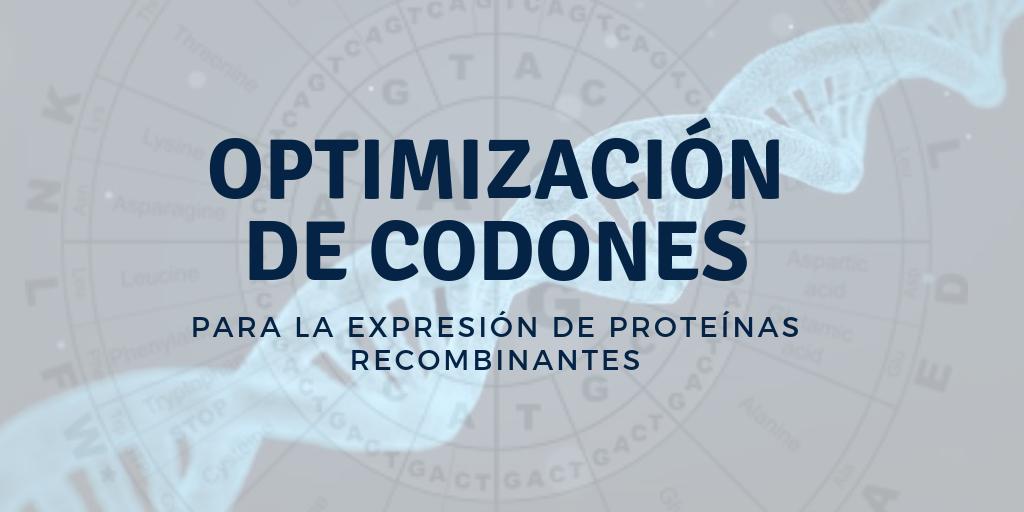 Optimización de codones para expresar proteínas recombinantes
