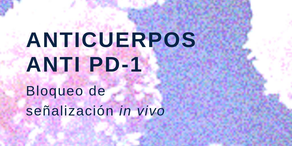 Anticuerpos anti PD-1: bloqueo de señalización in vivo