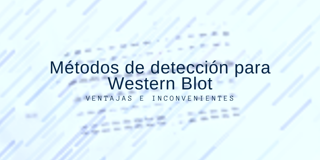 Métodos de detección para Western Blot