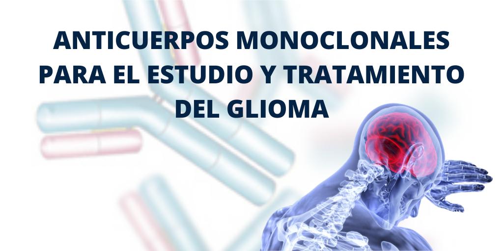 Anticuerpos monoclonales para el estudio y tratamiento del glioma