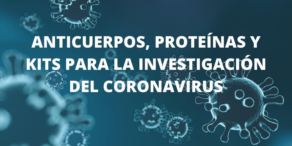 Anticuerpos y Kits para la investigación del Coronavirus (COVID-19)