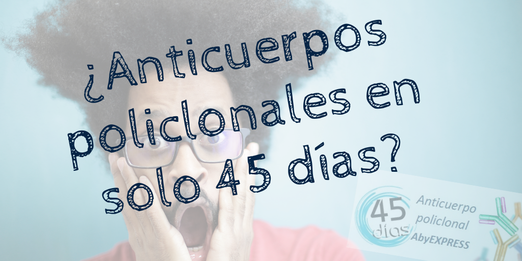 Anticuerpos policlonales en 45 días