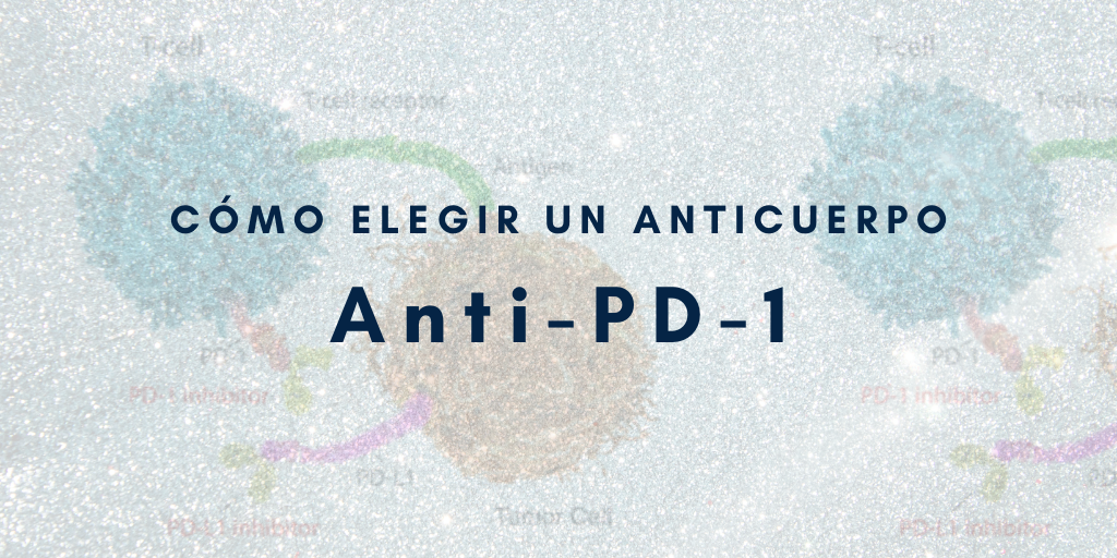 Anticuerpos anti-pd1
