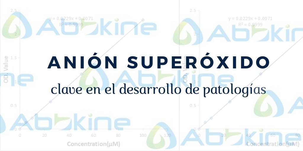 Anión superóxido, clave en el desarrollo de patologías