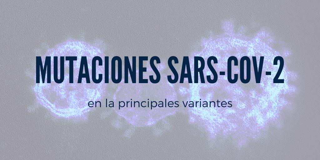 Mutaciones del SARS-CoV-2 en las 3 variantes principales