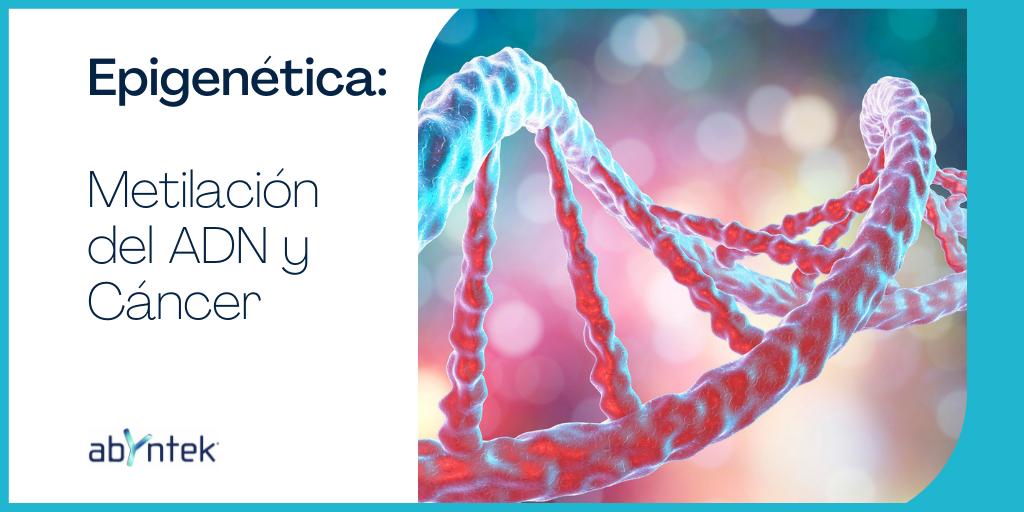 Epigenética: Metilación del ADN y cáncer