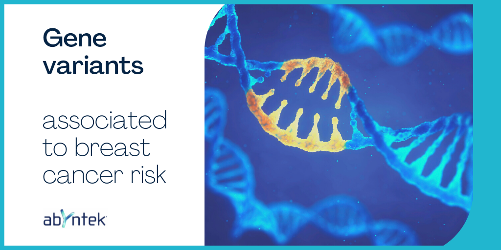 Gene variants associated to breast cancer risk
