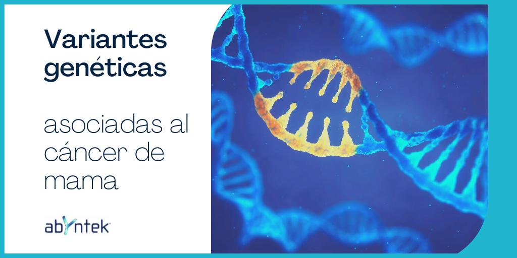 Variantes genéticas asociadas al cáncer de mama